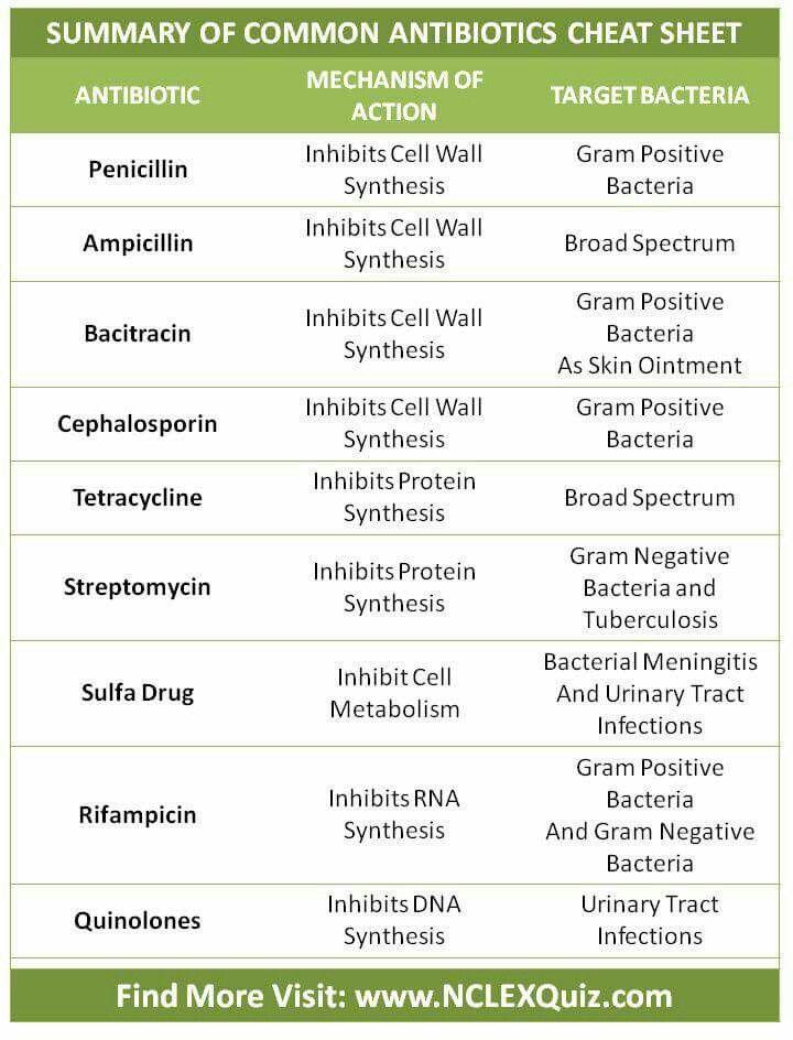 Common Antibiotics Cheat Sheet Medical Studies