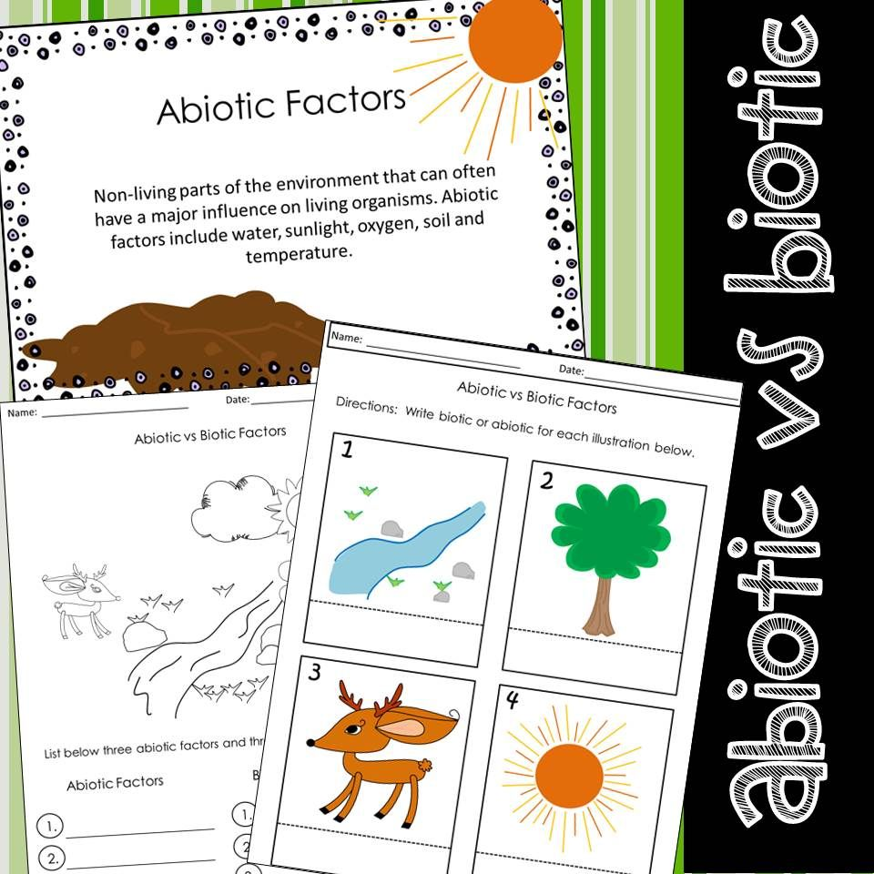 Abiotic Biotic Factors Worksheets With Images Abiotic