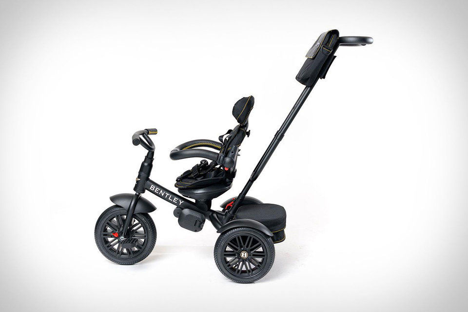 Bentley Centennial Stroller Trike in 2020 Bentley, Trike