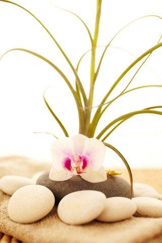 Besser schlafen dank Feng Shui So richtest du dein Schlafzimmer - schlafzimmer feng shui