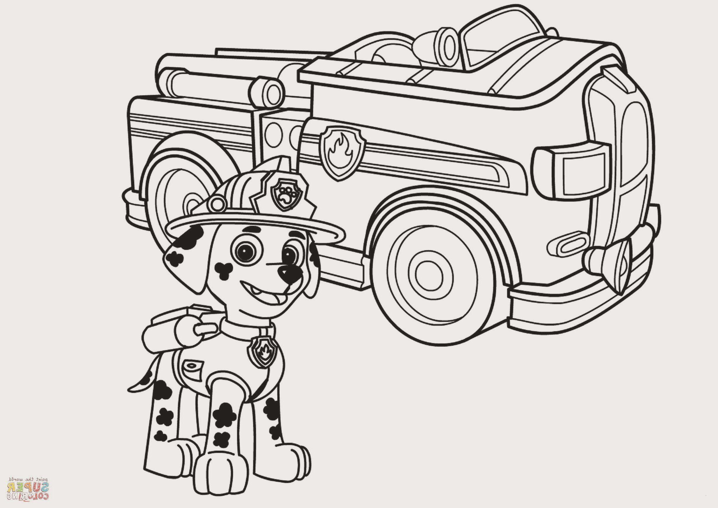 disegni di paw patrol da colorare 70 immagini stampa