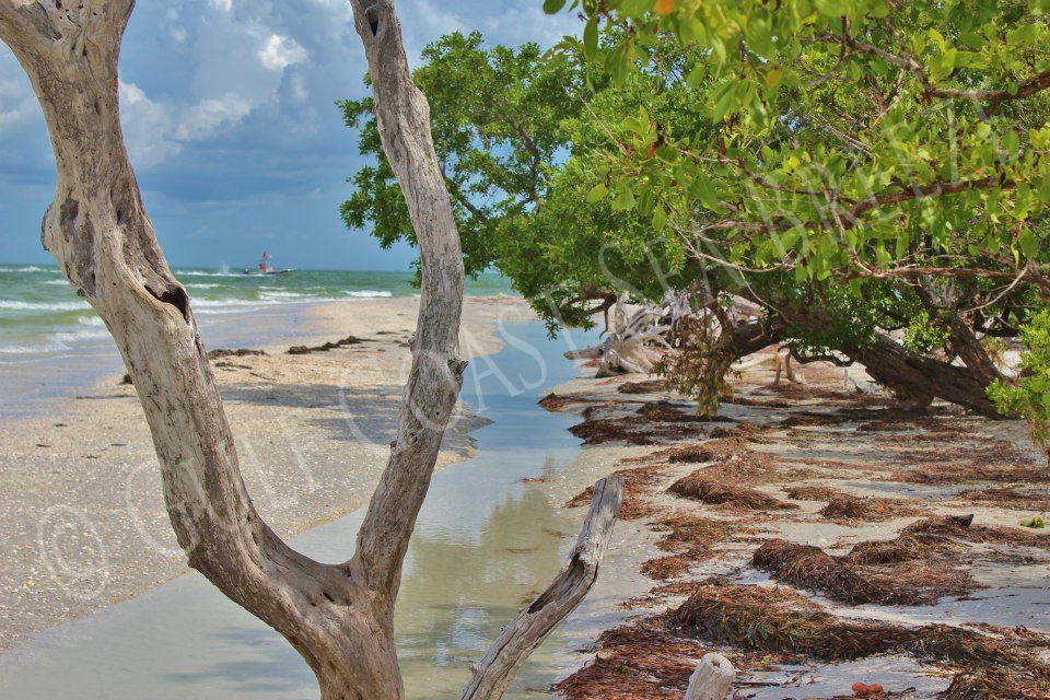 Sanibel Island Lighthouse Beach