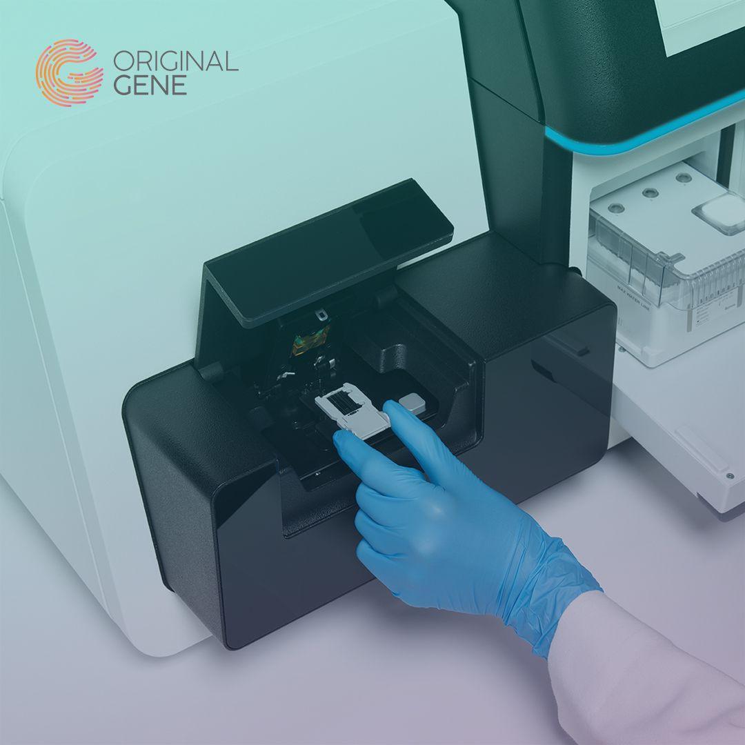 OriginalGene – Home DNA Testing & Genetic Profilin