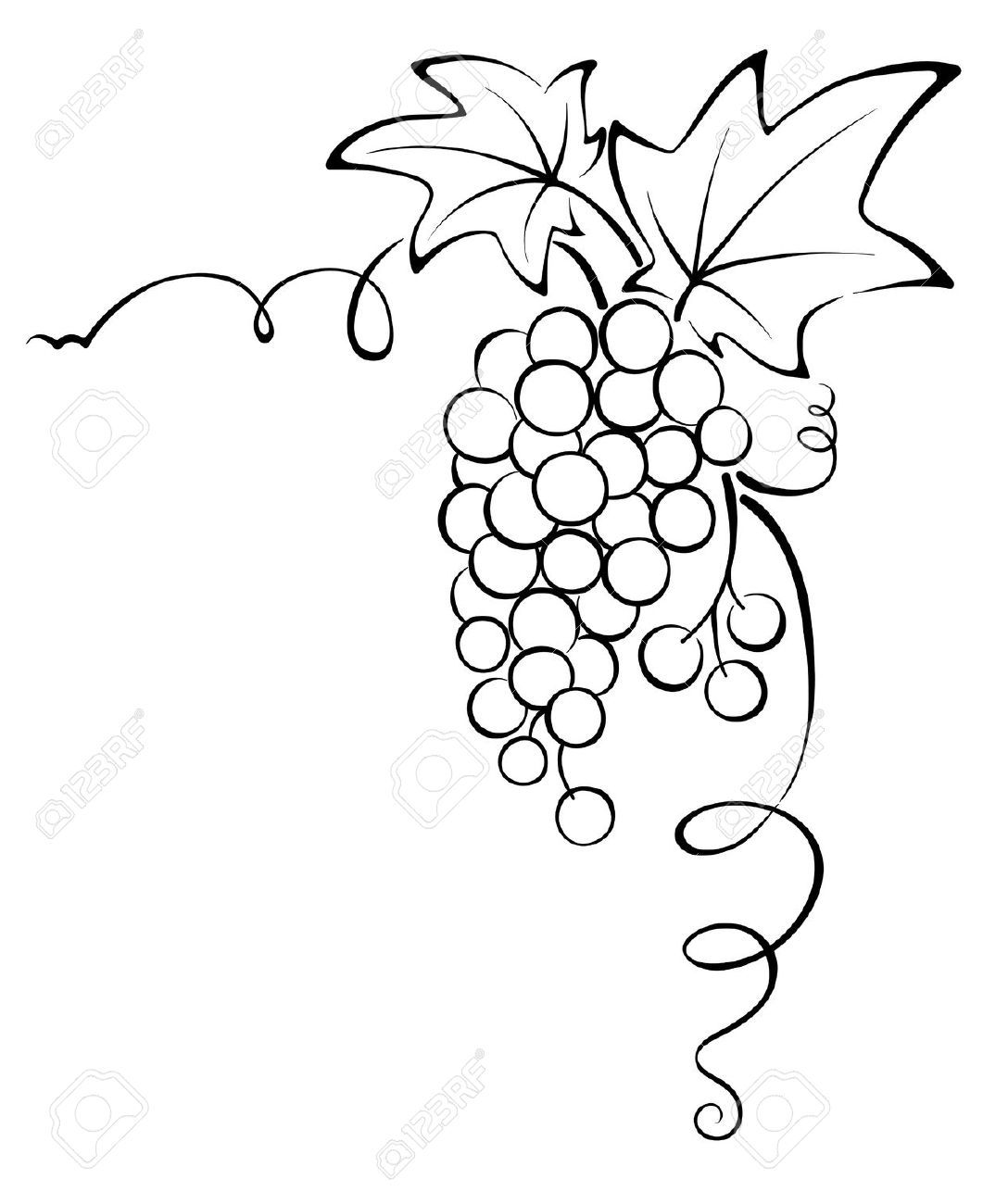 grape vine design - Google Search | Tile Abstract  for Drawing Grape Vines  61obs