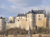 Forteresse royale de Chinon en cours de restauration (mars 2009) - Franck Badaire - CG 37