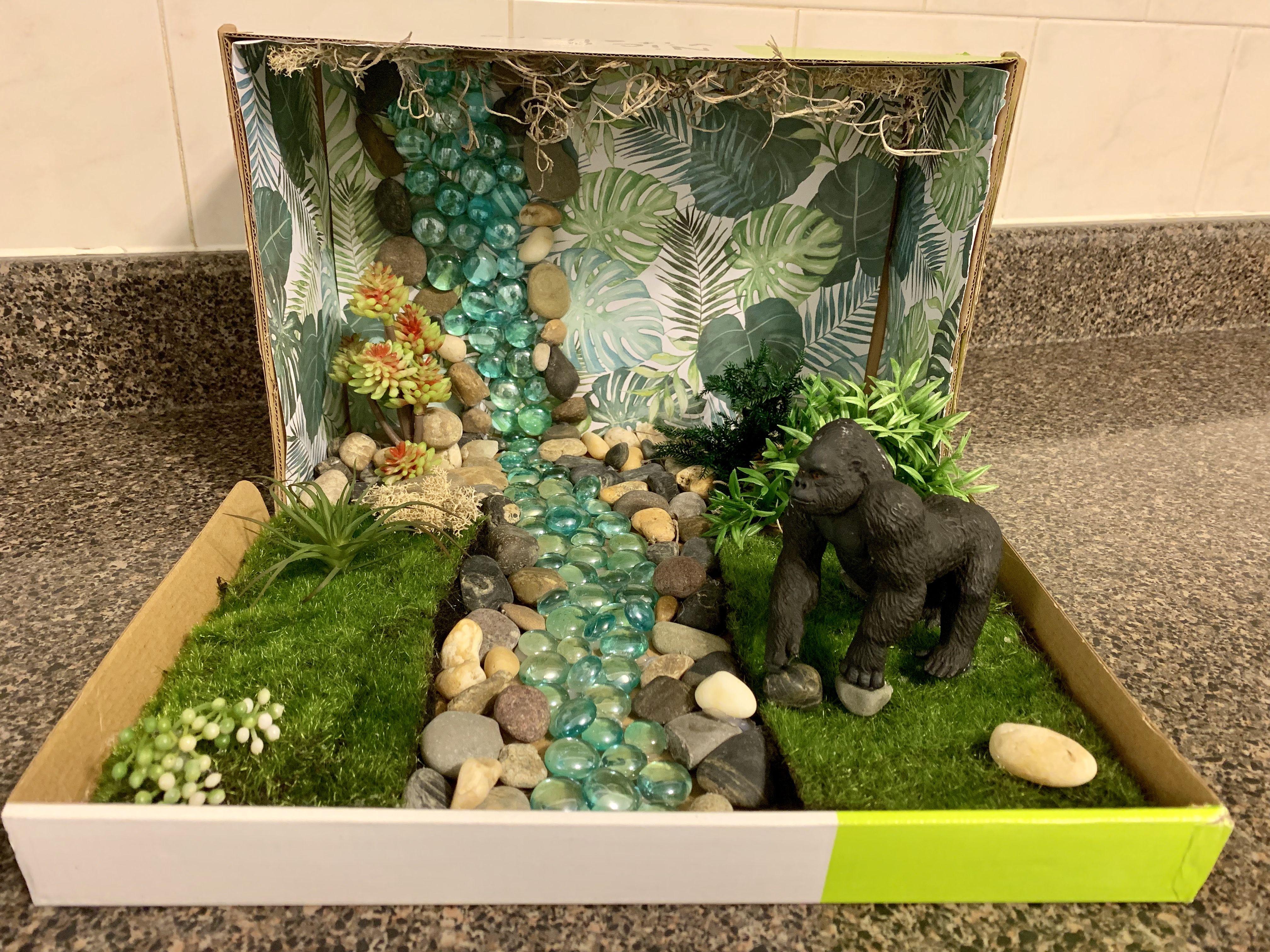 2nd Grade Diorama Project Gorilla In Rainforest Habitat
