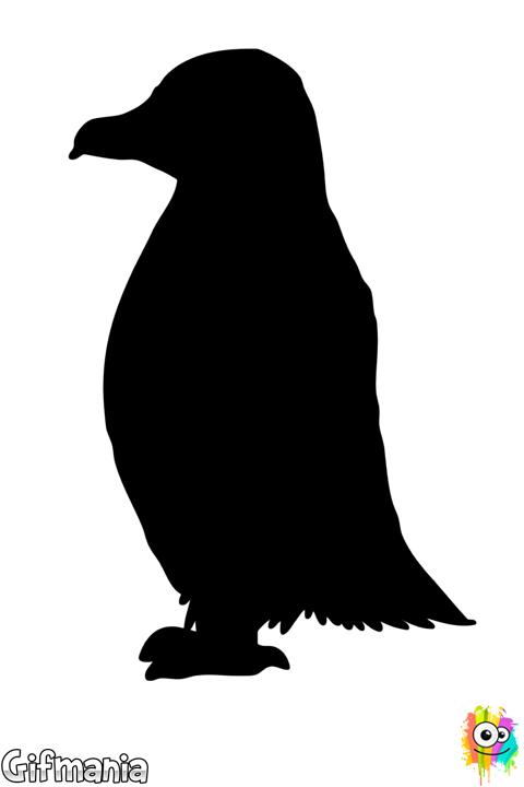 Penguin Dibujos De Pinguinos Pinguinos Dibujos