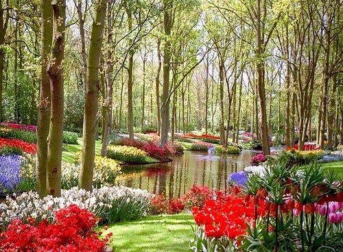 Superbe Japanese Garden, University Of Washington Botanical Gardens, Seattle Photo  From Larryjw
