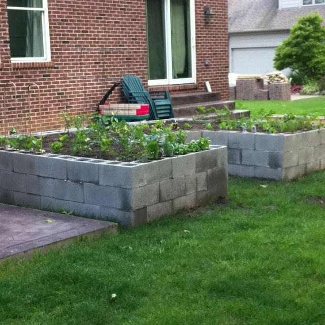 20 Brilliant Raised Garden Bed Ideas You Can Make In A: Cinder Block Raised Garden Bed. Eco Friendly, Cheap