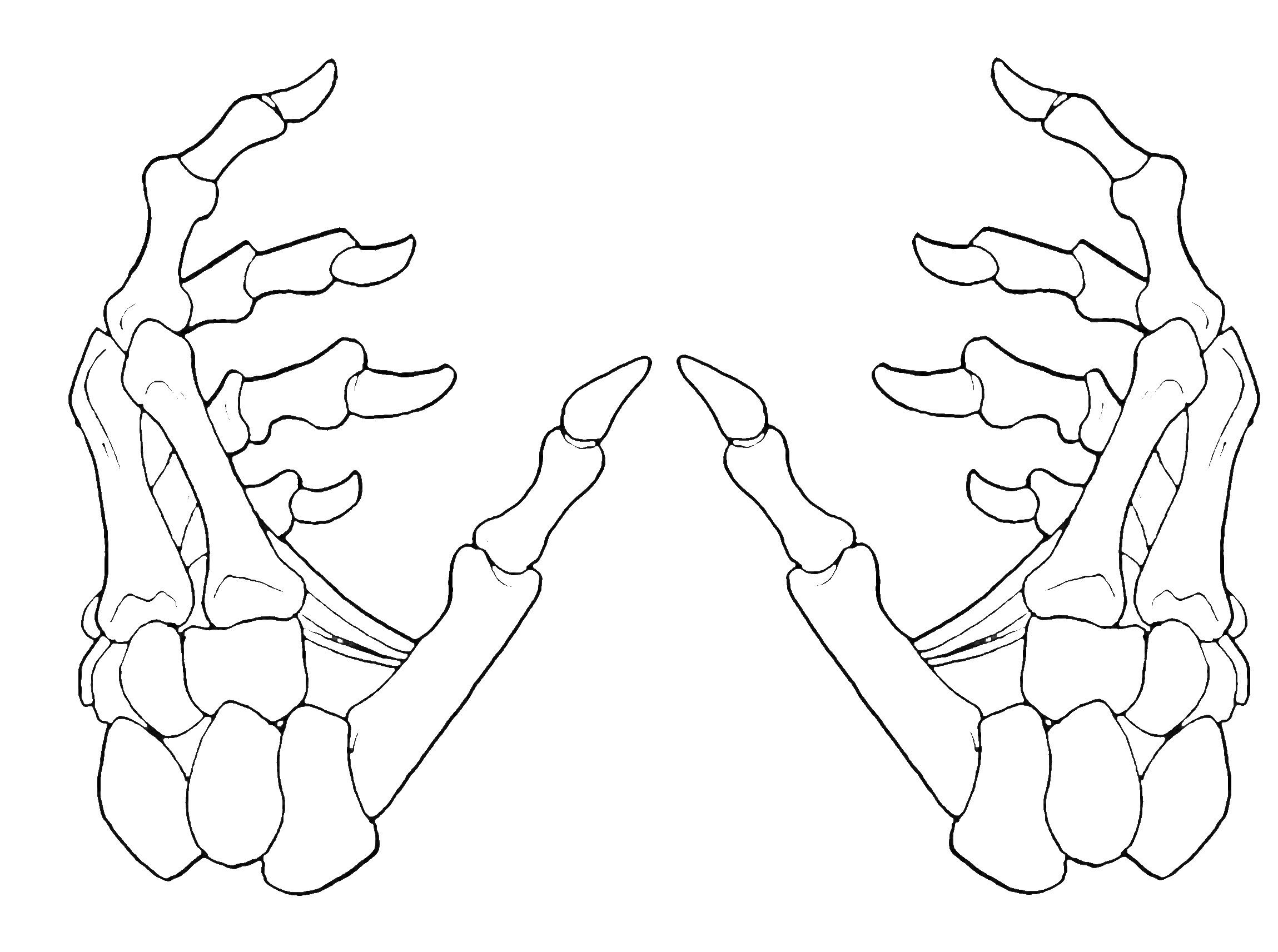 Tattoo design 1 Skeleton hands drawing, Skeleton hand