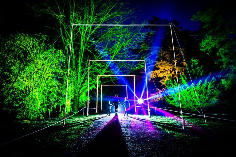 Magical Christmas Lights Trail Returns To Westonbirt Arboretum In 2020 Outdoor Christmas Lights Christmas Lights Outdoor Christmas
