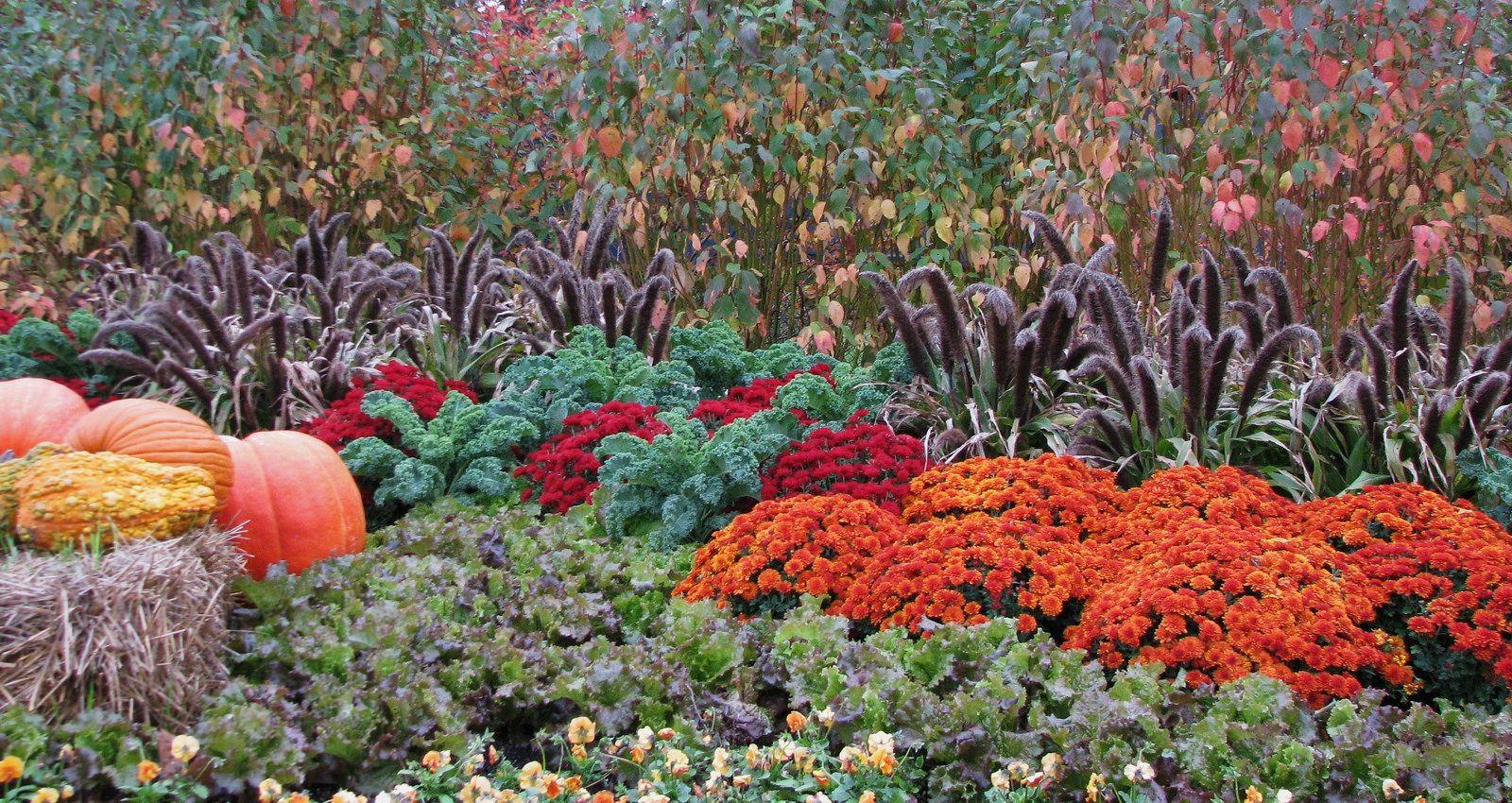 Fall Harvest | Flickr - Photo Sharing!