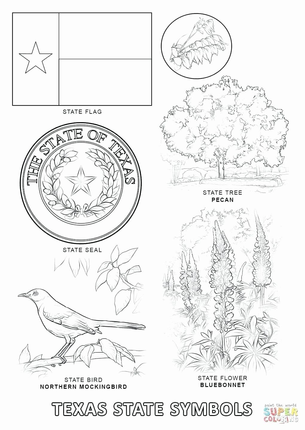 Florida State Flower Coloring Page Best Of State Flags Printable