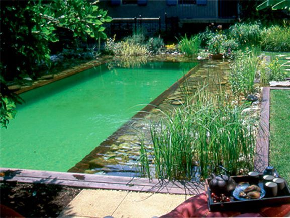 La piscine naturelle Piscines naturelles, La piscine et Piscines - Piscine A Construire Soi Meme