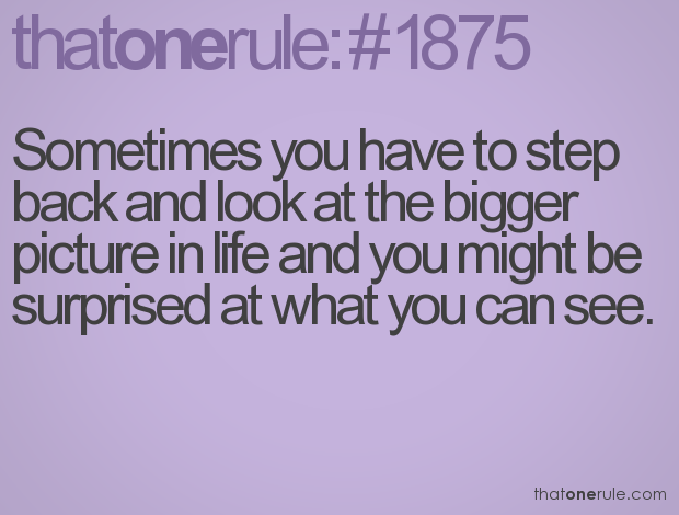 Sometimes You Have To Step Back And Look At The Bigger Picture In