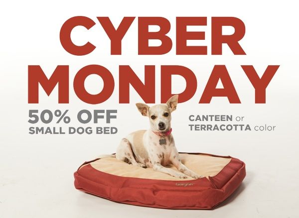 Cyber Monday Pet Deal 50 Off Small Dog Beds High End Orthopedic Bed Comes In 2 Colors Dog Beds For Small Dogs Coastal Pet Products Pets