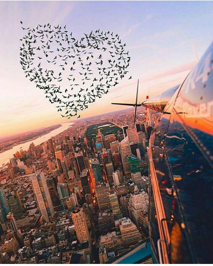 En él amor podrá distancia, pero si las personas están destinadas a estar juntas , nada lo cambiaría