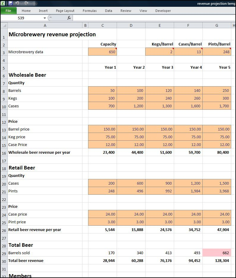 Microbrewery Business Plan Revenue Projection Business
