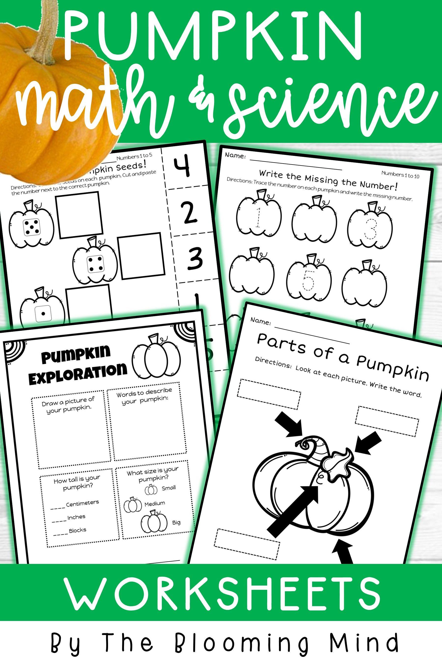 Pumpkin Math And Science Worksheet Bundle