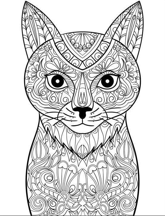 Pin by Elizabeth lamendola on coloring | Cat coloring page ...