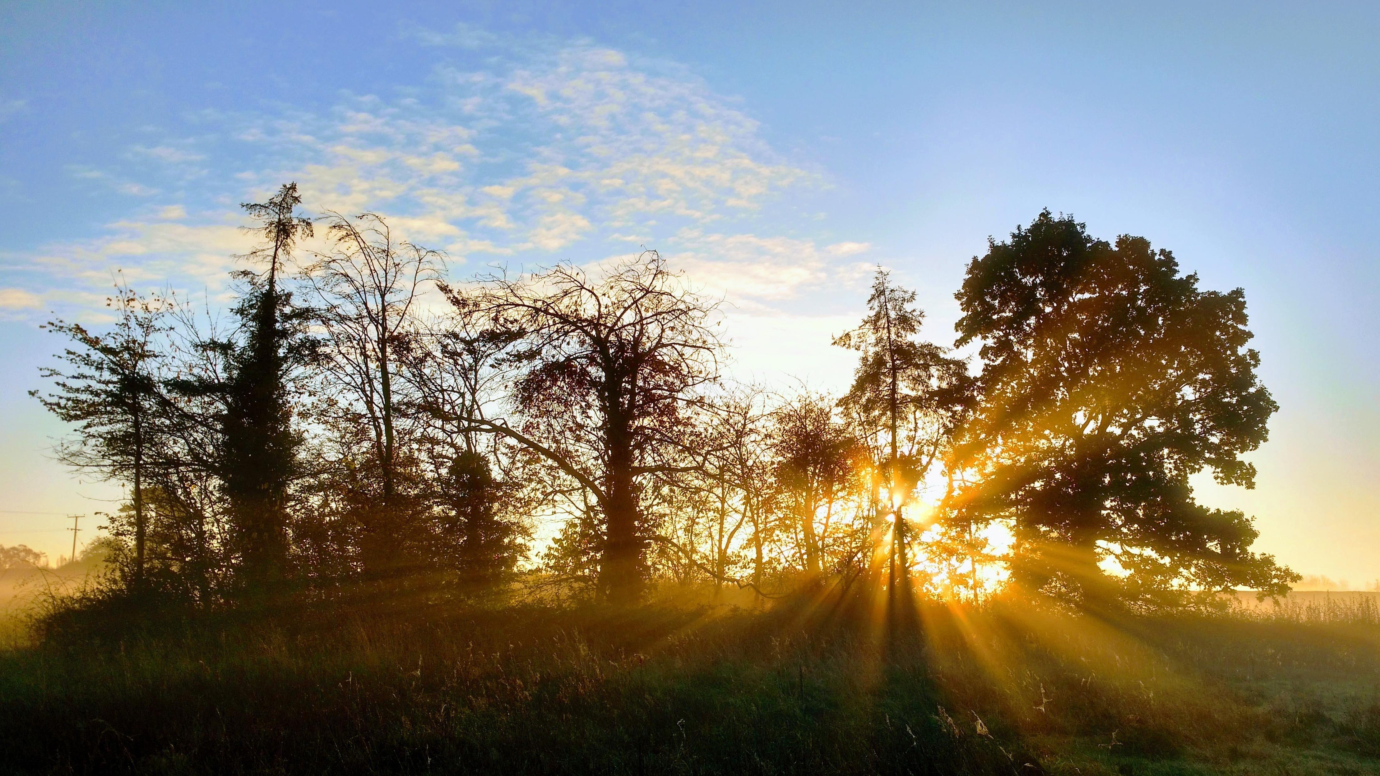 Autumn sunrise in hamptoninarden uk oc 4438x2497
