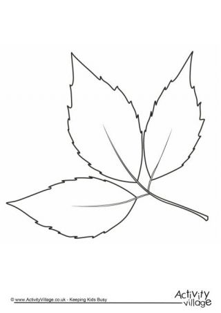 autumn leaf colouring page 2 - Leaves Coloring Page 2