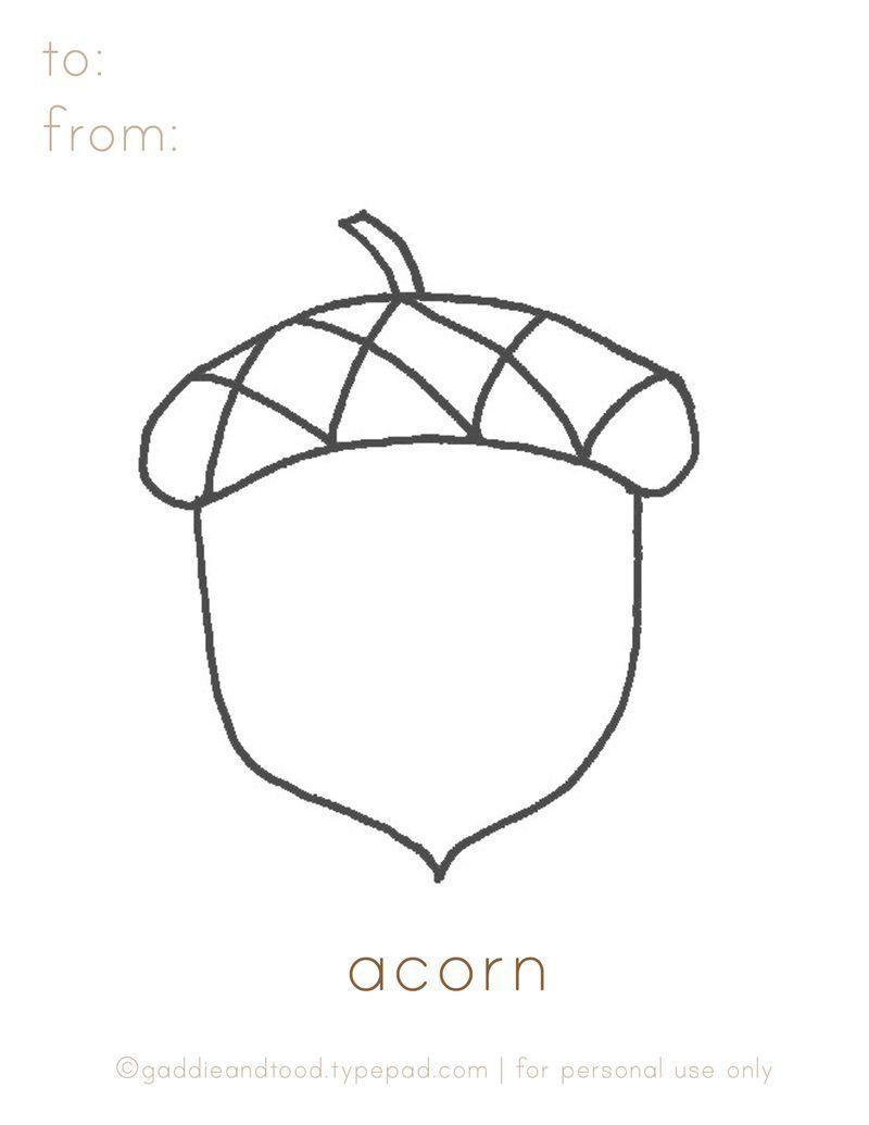 gaddieandtood.typepad.com free - printable acorn coloring page | For ...