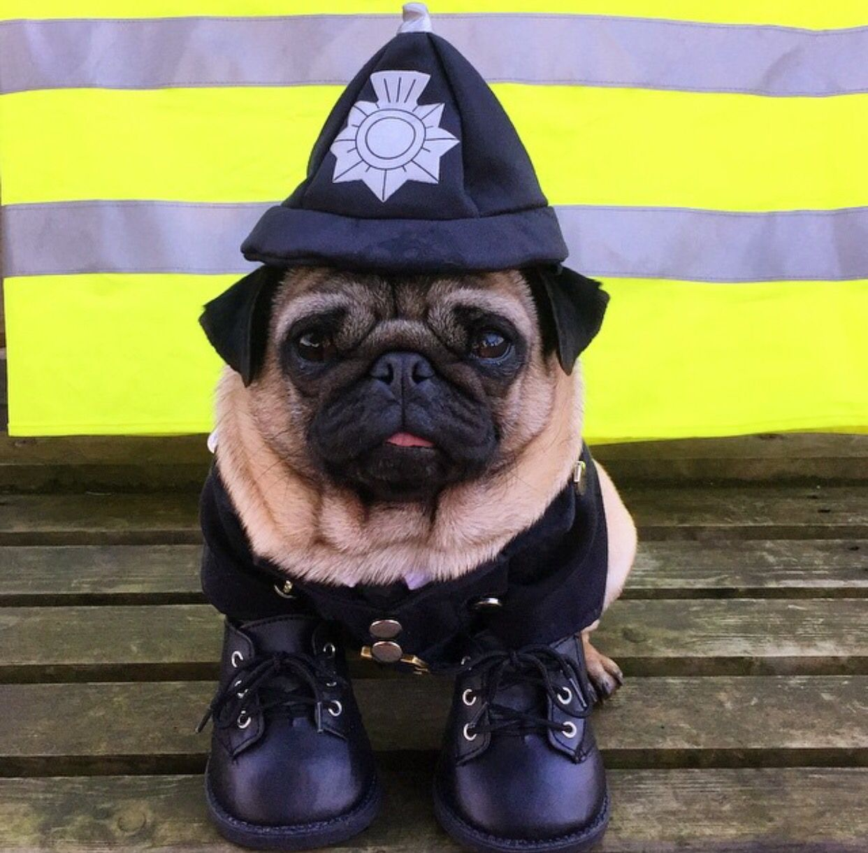 Officer Pug Pug Clothes Cute Pugs Pug Love