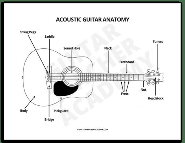 Acoustic Guitar Anatomy Guitar Lessons Guitar Teaching