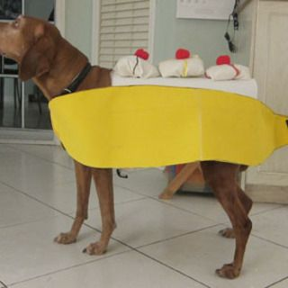Make A Banana Split Dog Costume Dog Halloween Costumes Pet