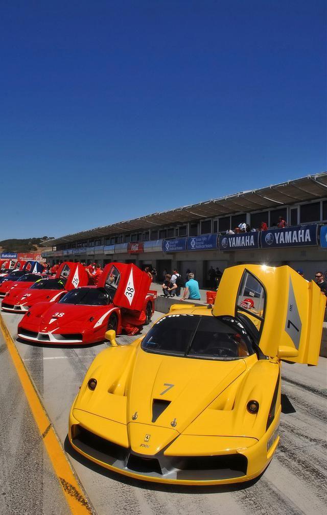 Ferrari Fxx Evoluzione Enzo Ferrari Fxx Ferrari Ferrari Enzo