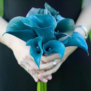 Idees Pour Un Mariage Decore Couleur Bleu Petrole Wedding