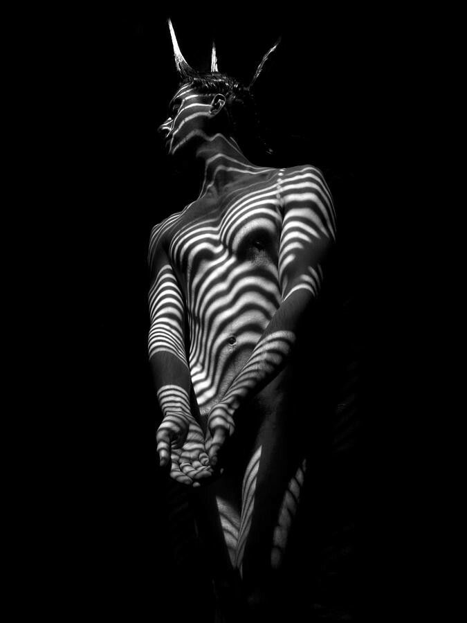 Fineartamerica com 5812 zebra striped male body in black and white photograph by chris maher
