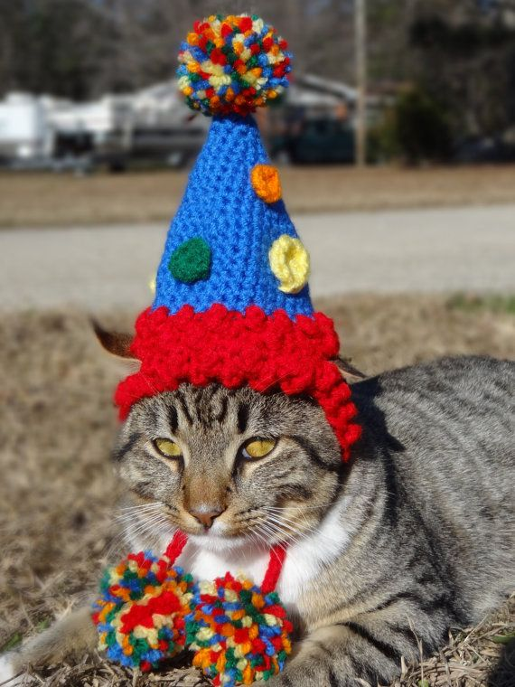 Birthday Party Cat Hat Costume Cats And Small By Iheartneedlework