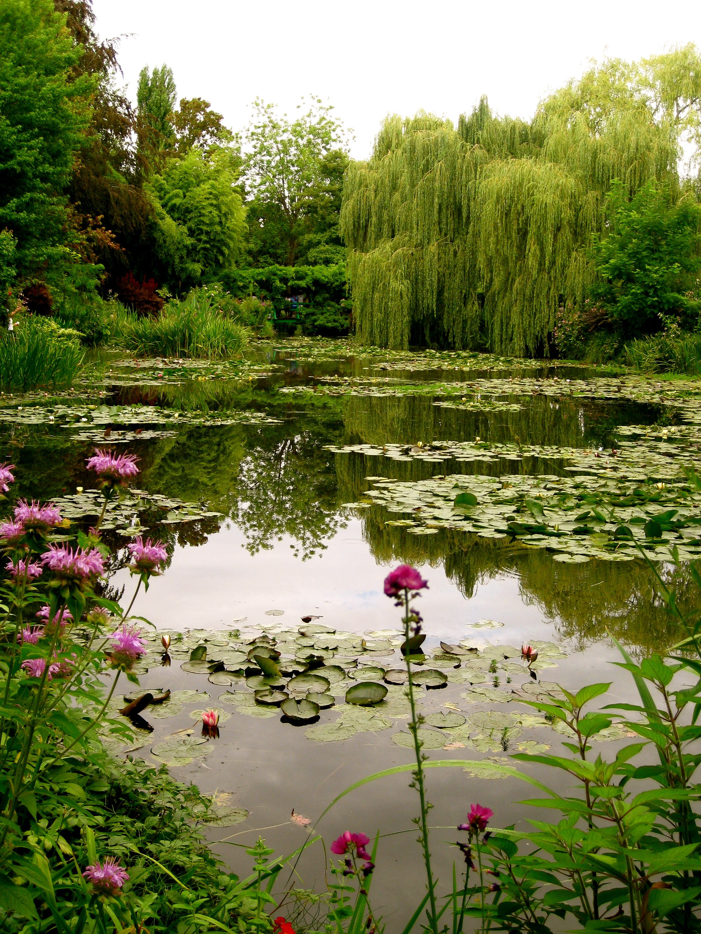 Monet 39 s pond giverny france places i have been or would like be pinterest willow tree for Monet s garden france