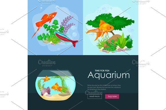 Aquarium fish, seaweed underwater, banner template layout with ...