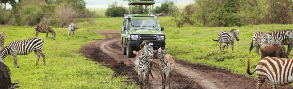 Vous partez pour un tour du monde? Ou en Afrique? Savez-vous quel type d'assurance voyage contractez? Toutes les explications ici!