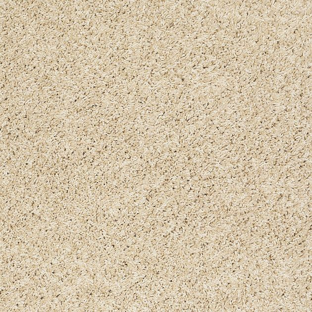 Feather Your Nest With This So Soft Wall To Wall Carpeting