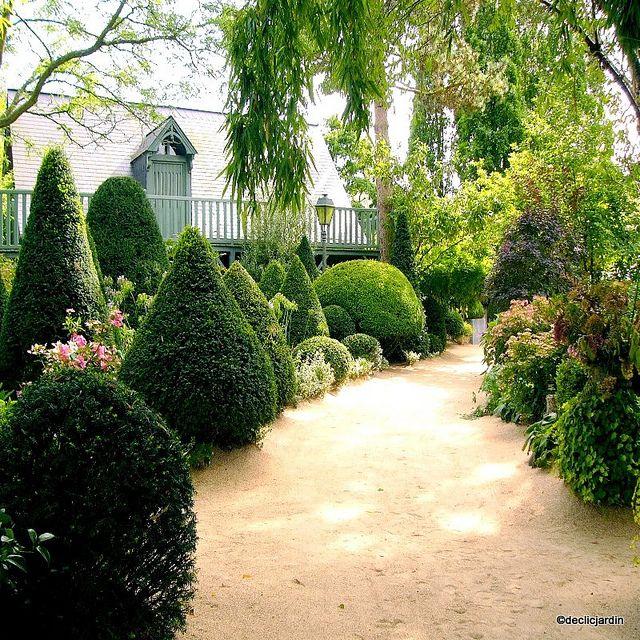 jardin d 39 agapanthe by declicjardin via flickr les jardins agapanthe pinterest agapanthe. Black Bedroom Furniture Sets. Home Design Ideas