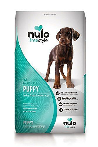 Dog And Cat Nutrition Truths In Proper Feeding Your Special Pet Grain Foods Dry Dog Food Puppy Food