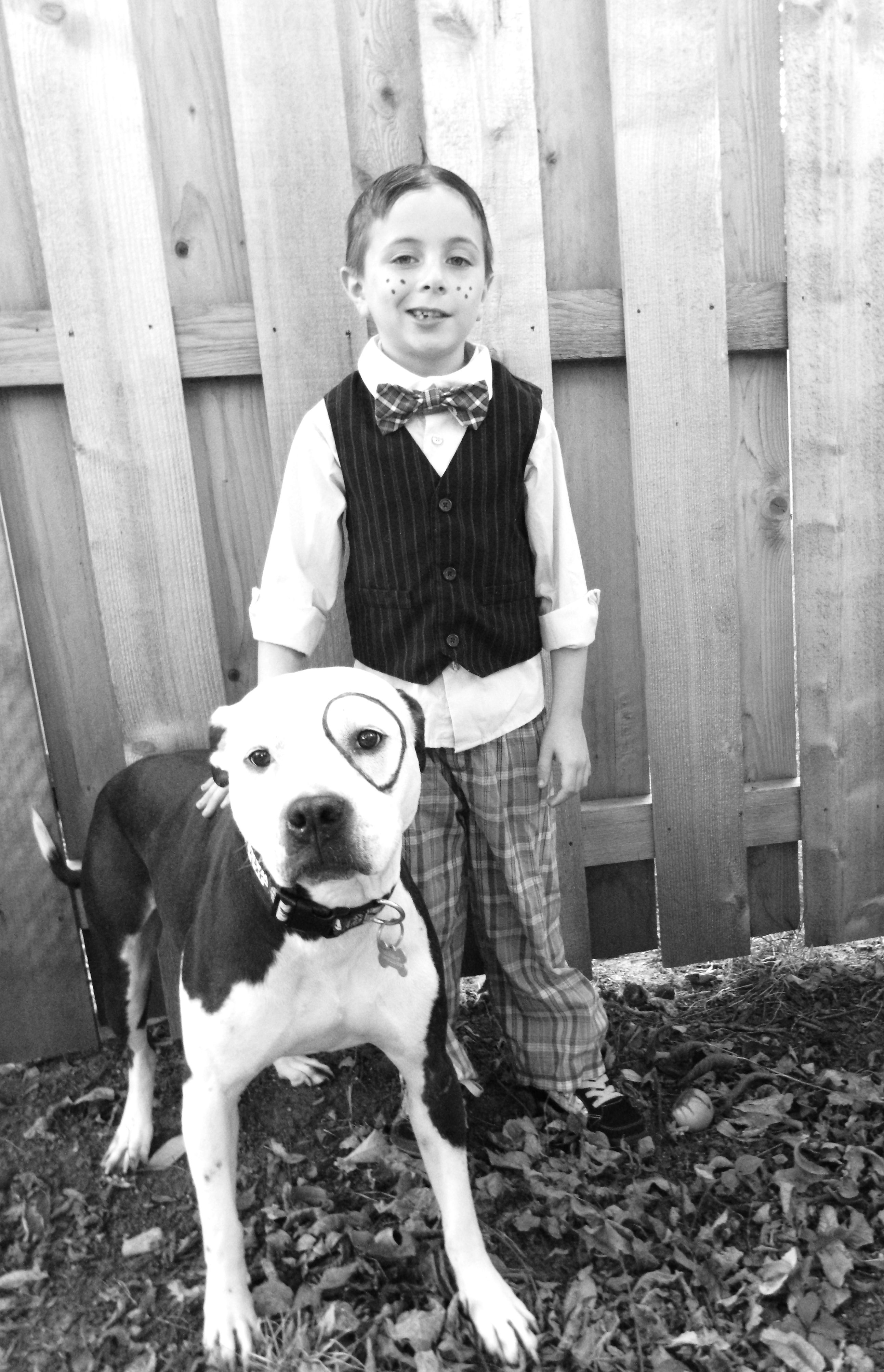 Kingston And Skyler Our Gang My Boys American Pit Bull Terriers Dogs Pitbull Terrier American Pit