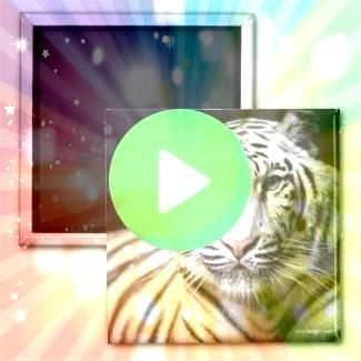 Bengal Tiger Photography Magnet  White Bengal Tiger Photography Magnet   White Bengal Tiger Photography Magnet    Trademark Global Howard Robinson The White Tiger Canvas...