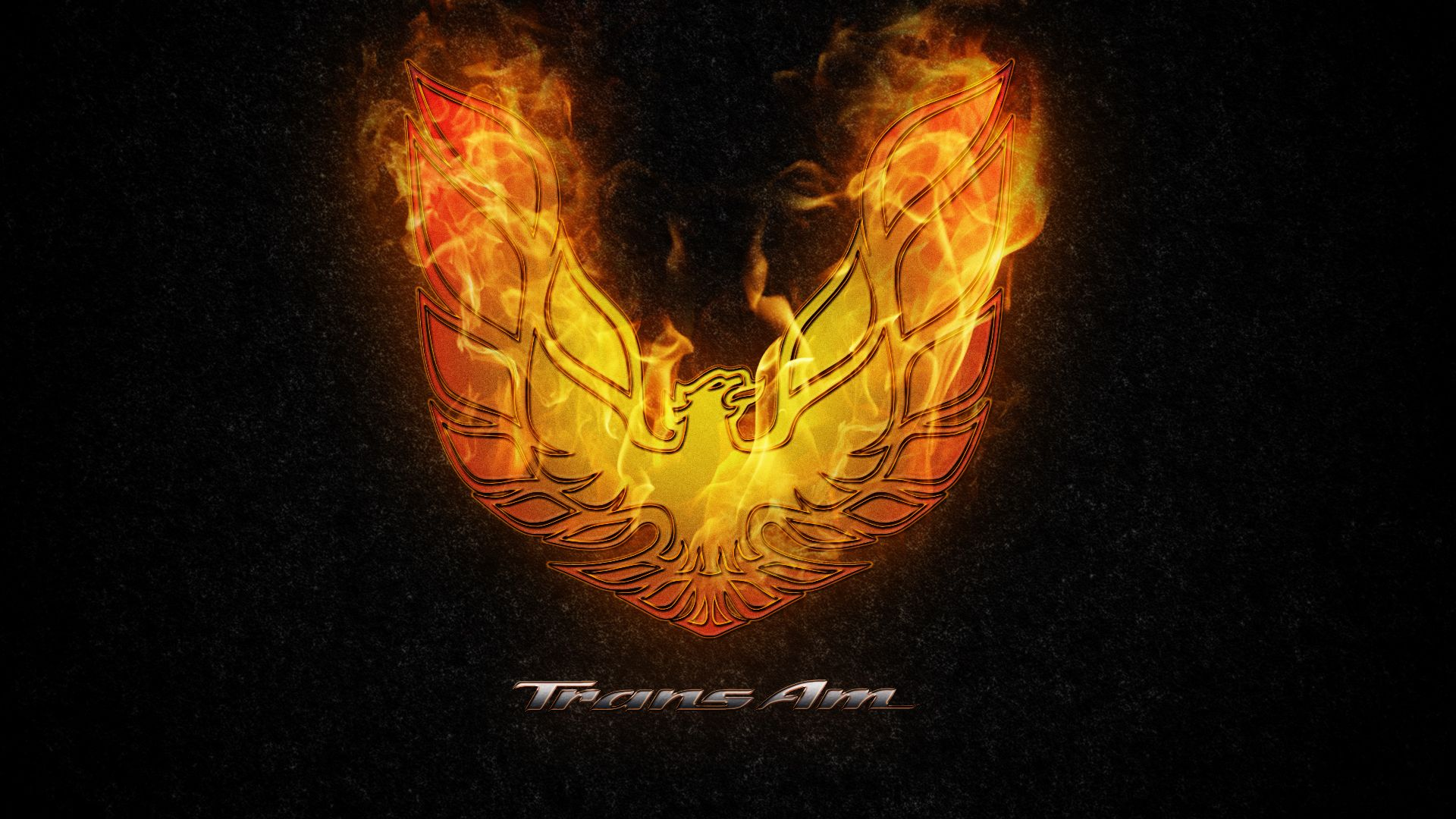trans am logo tattoo trans am logo tattoo image 405 trans am phoenix colorful tattoo. Black Bedroom Furniture Sets. Home Design Ideas