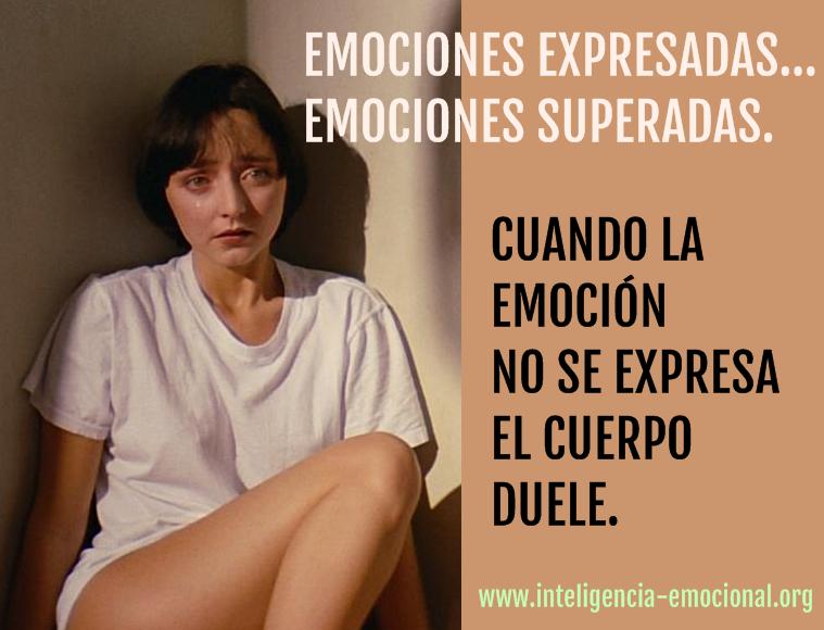 Visitá www.inteligencia-emocional.org