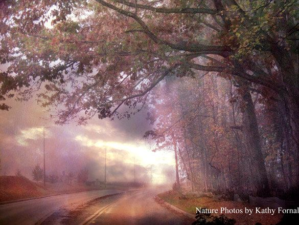Nature Photos Dreamy Spring Surreal Landscape Soft Pastel Trees Serene Peaceful Art Nature Photography Trees Fall Photography Nature Fall Trees Photography
