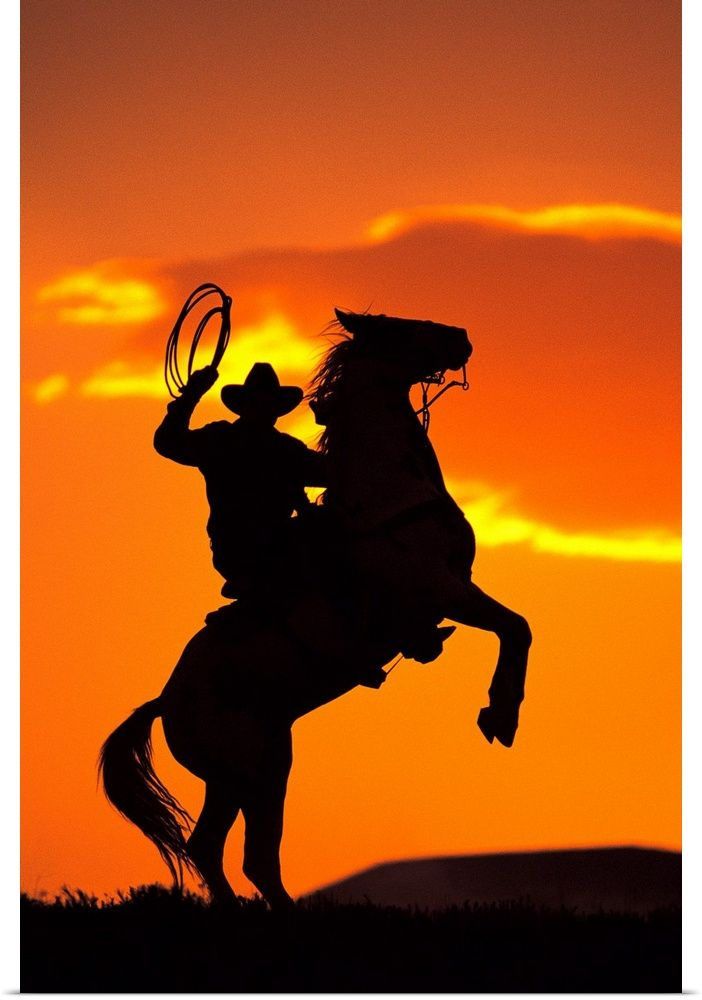 Silhouette Of Cowboy On Horse Rearing Up In 2021 Cowboy Pictures Cowboy Art Cowboy Photography