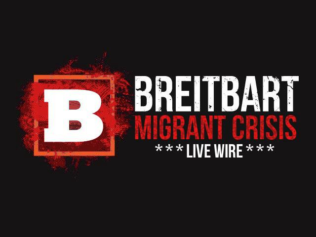 migrantlivewires