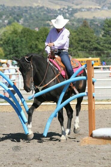Prides Rocky Wind, natural Tennessee Walking Horse, trail obstacle class