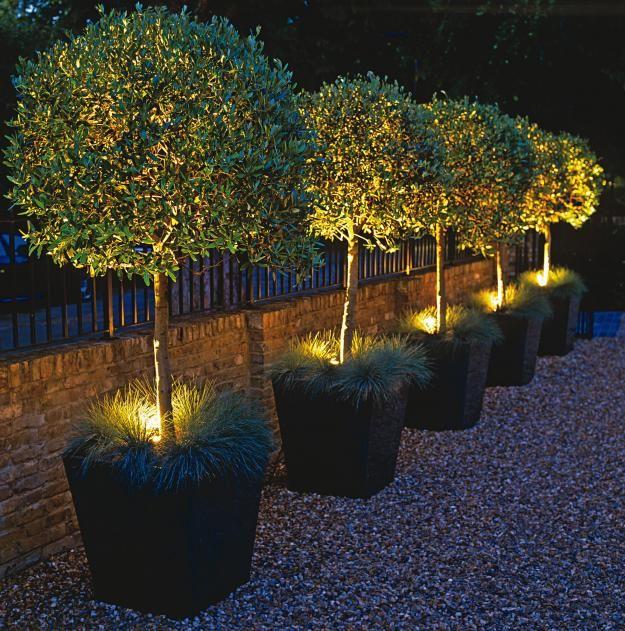 Petit jardin moderne  visite d\u0027oasis en 55 photos Jardines - iluminacion jardin