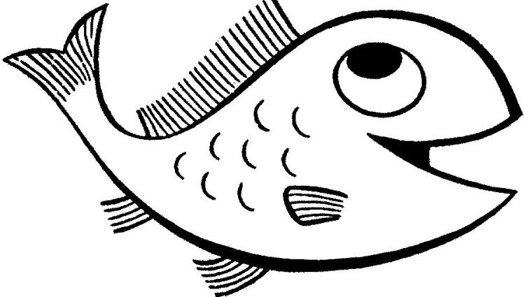 Fish Drawing For Kids Fish Pinterest